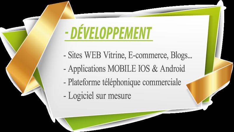 1 cadre-développement