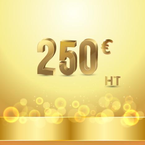 maintenance technique 250 Eur ht