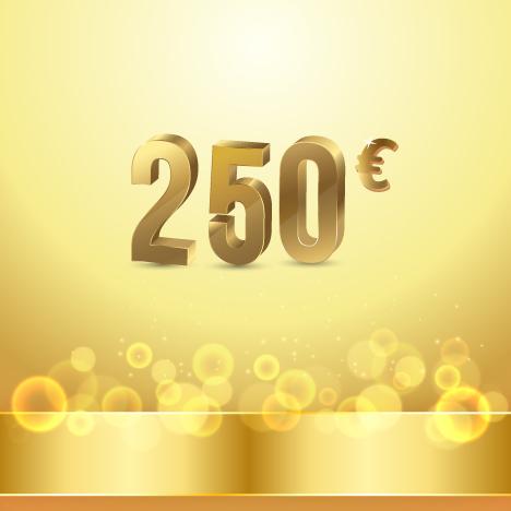maintenance technique 250 Eur