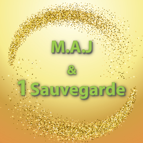 M.A.J-&-1-Sauvegarde