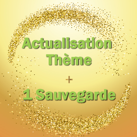 actualisation-theme-1-sauvgarde-